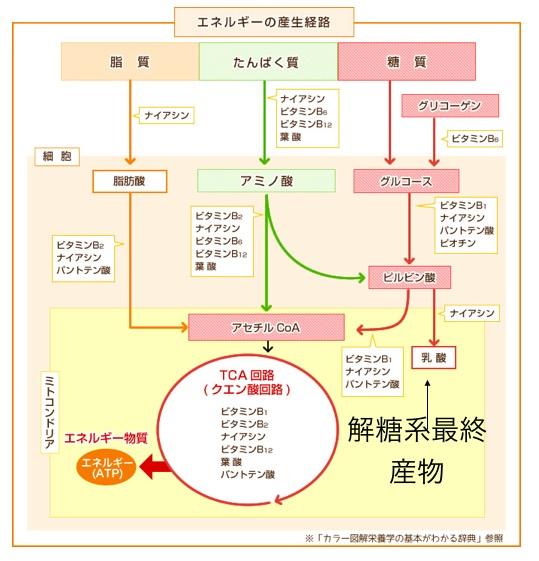 ひらやま脳神経外科勉強会①.0040.jpeg
